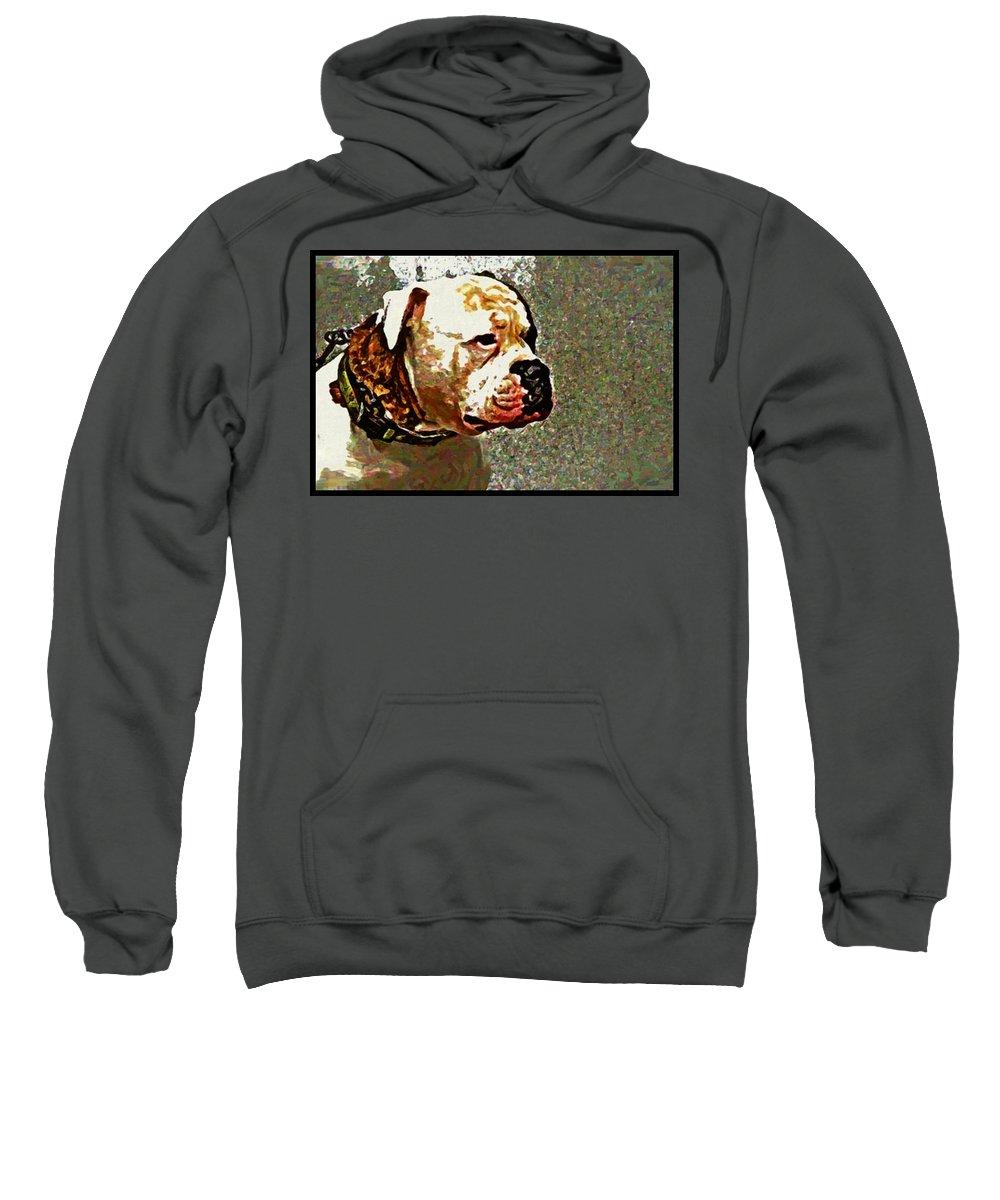 Bulldog Dog Sweatshirt featuring the photograph Funky Bulldog by Alice Gipson