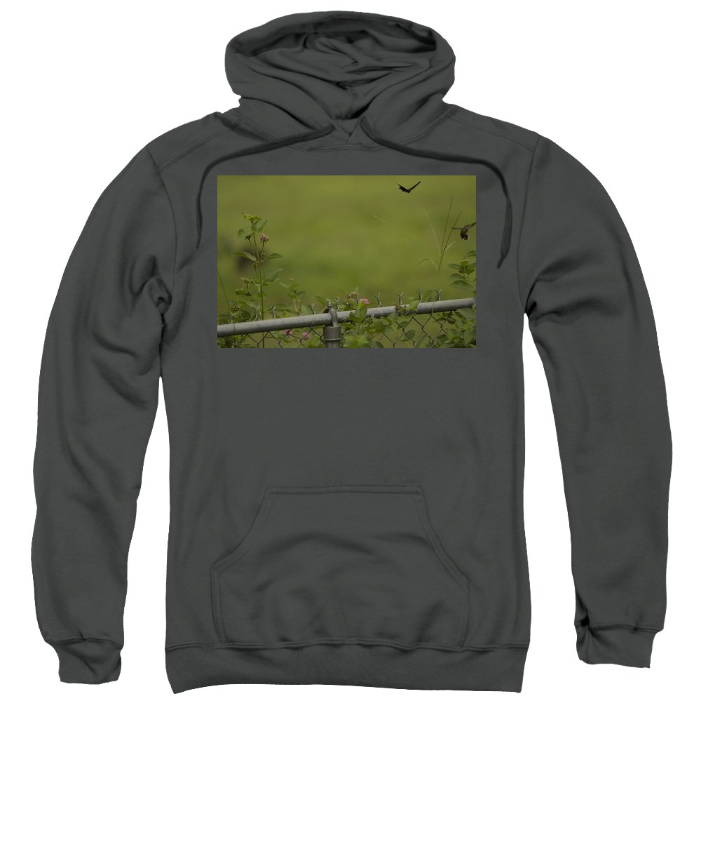 Sweatshirt featuring the photograph Garden Scene Before Lightroom by Kim Henderson