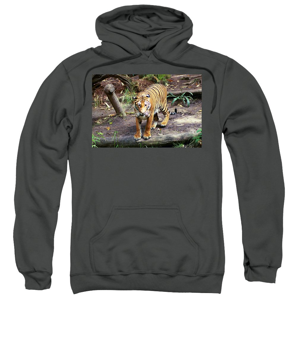 Sweatshirt featuring the photograph Give Me A Reason by Michael Frank Jr