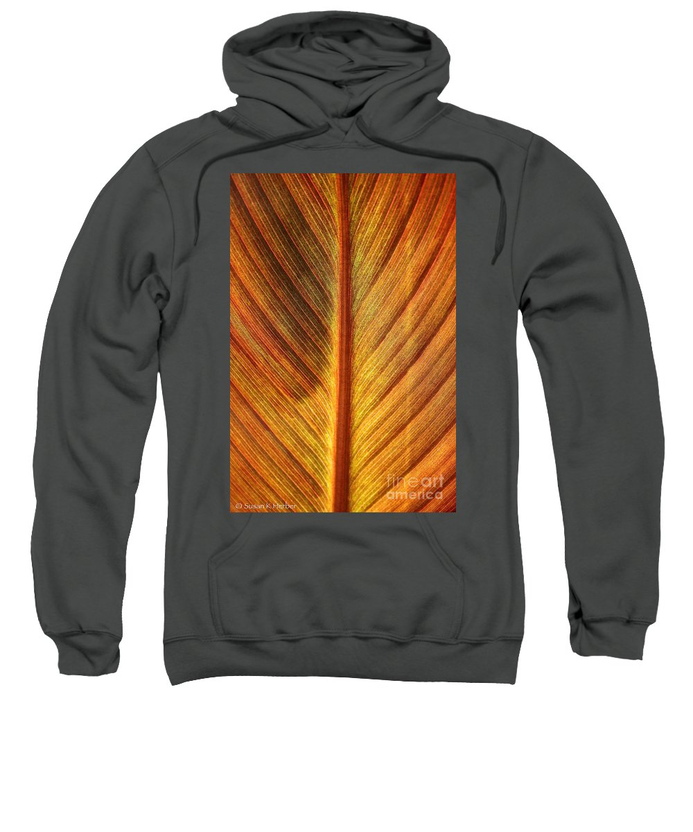 Plant Sweatshirt featuring the photograph Gold Leaf by Susan Herber