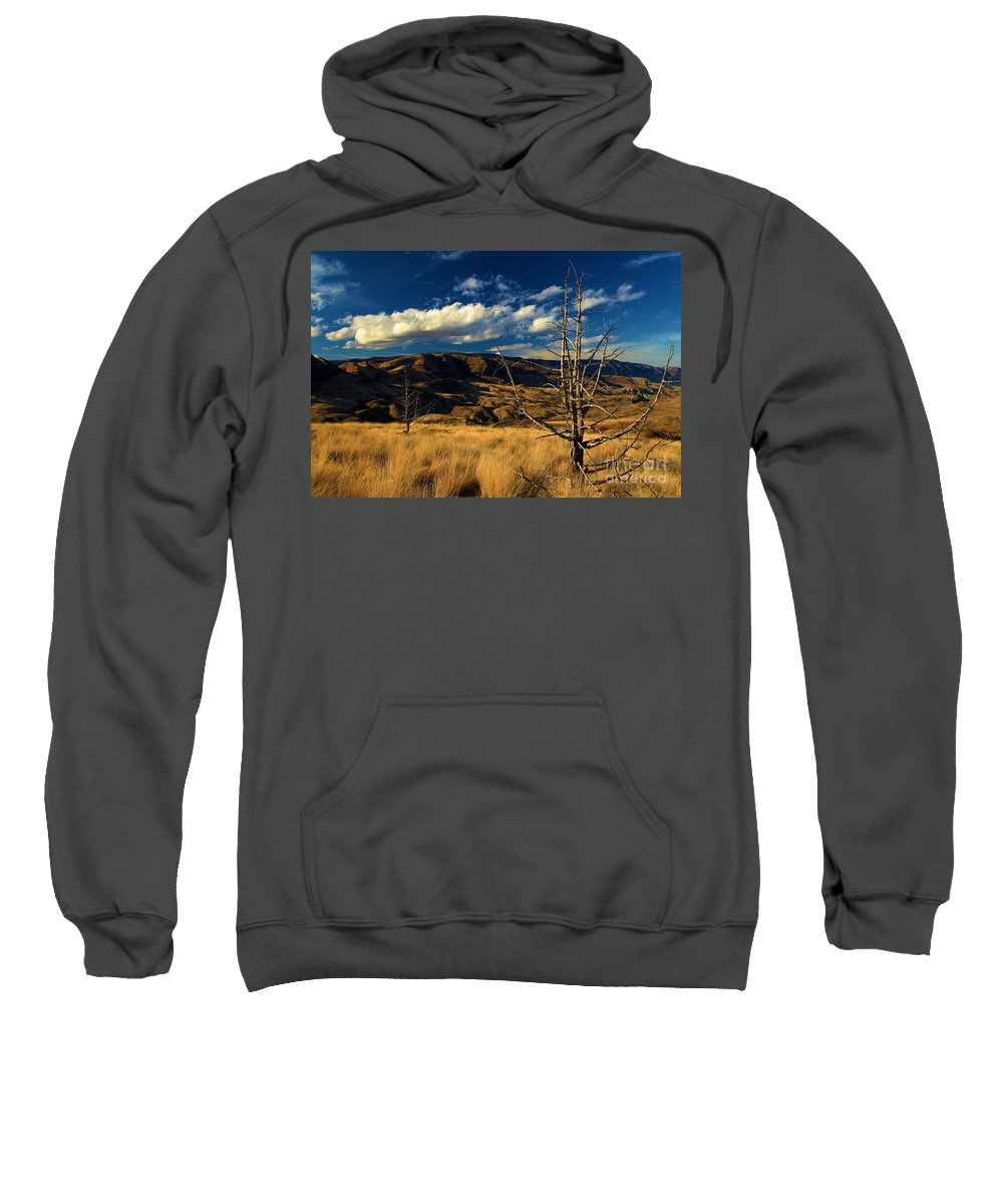 John Day Fossil Beds National Monument Sweatshirt featuring the photograph Golden Hills by Adam Jewell