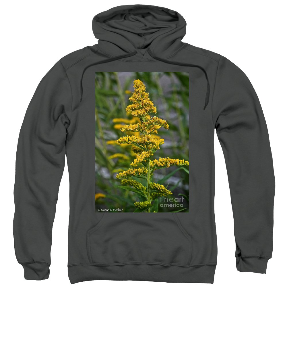 Outdoors Sweatshirt featuring the photograph Golden Rod by Susan Herber