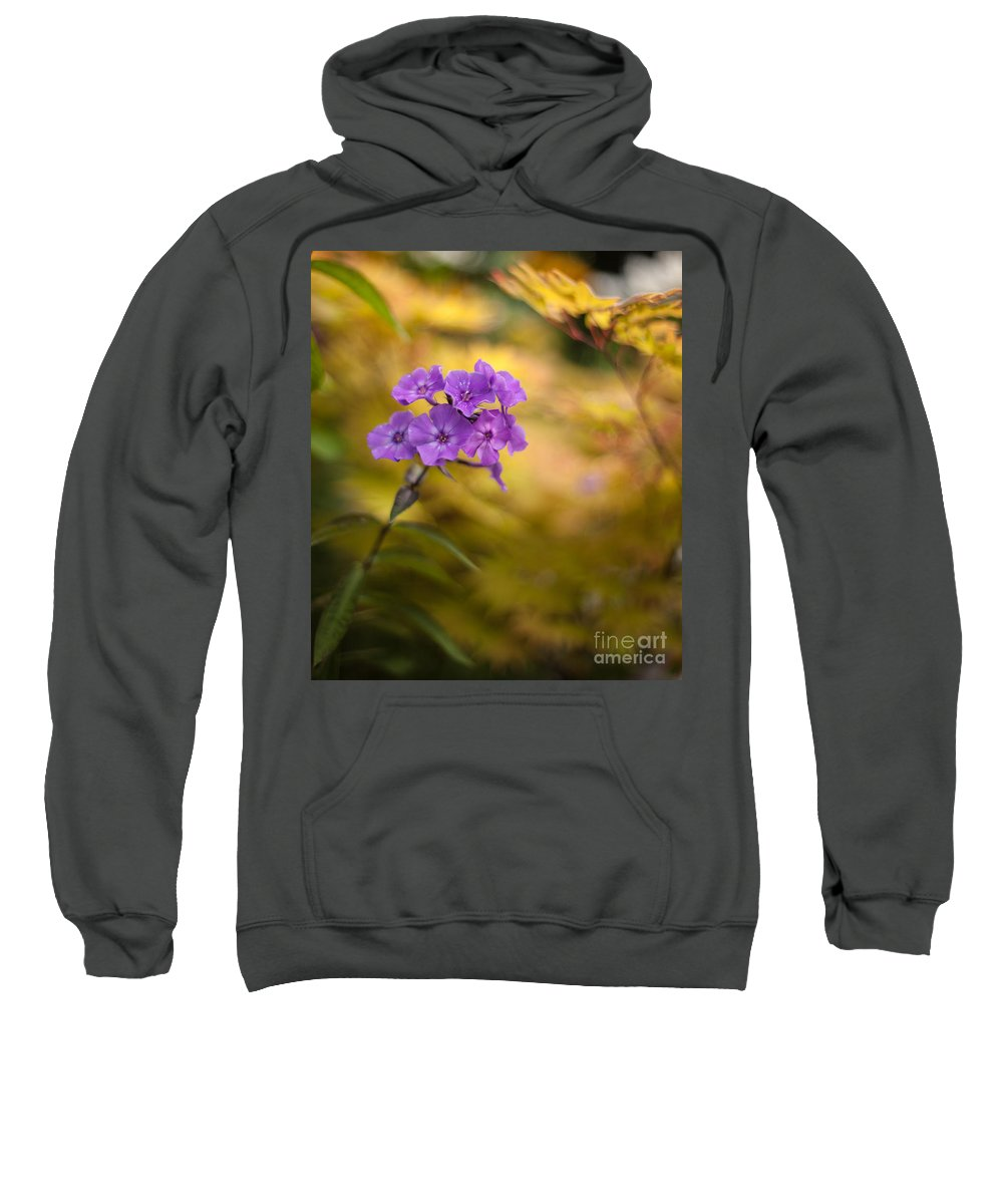 Flower Sweatshirt featuring the photograph Golden Violets by Mike Reid