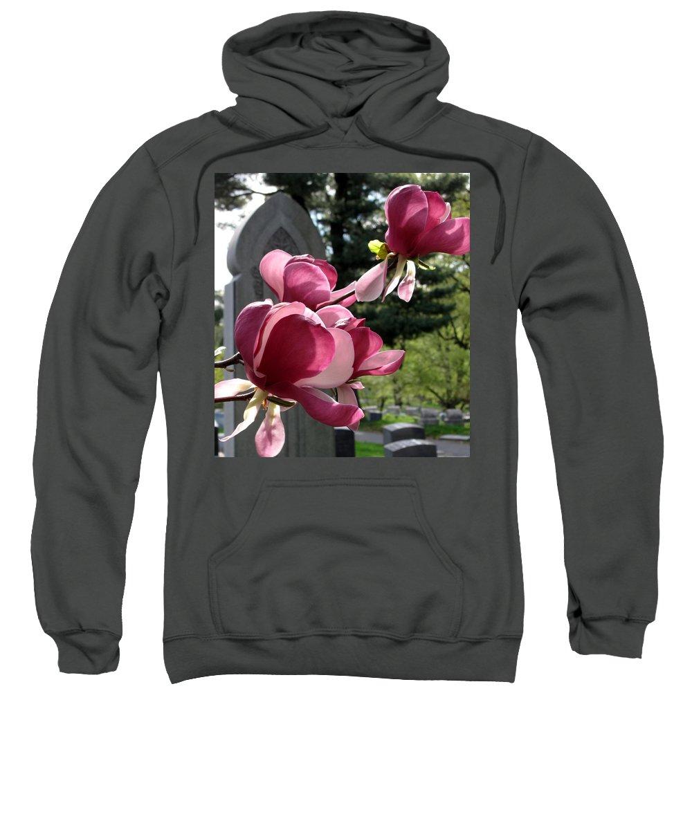 Graveyard Sweatshirt featuring the photograph Graceful Abundance by Michele Nelson