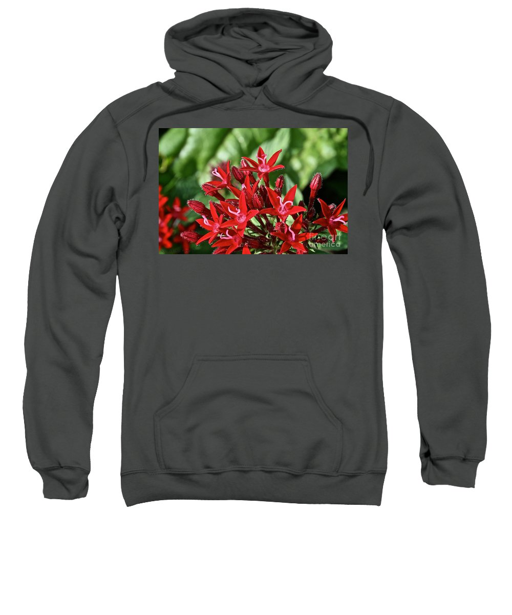 Outdoors Sweatshirt featuring the photograph Graffiti Red Lace by Susan Herber