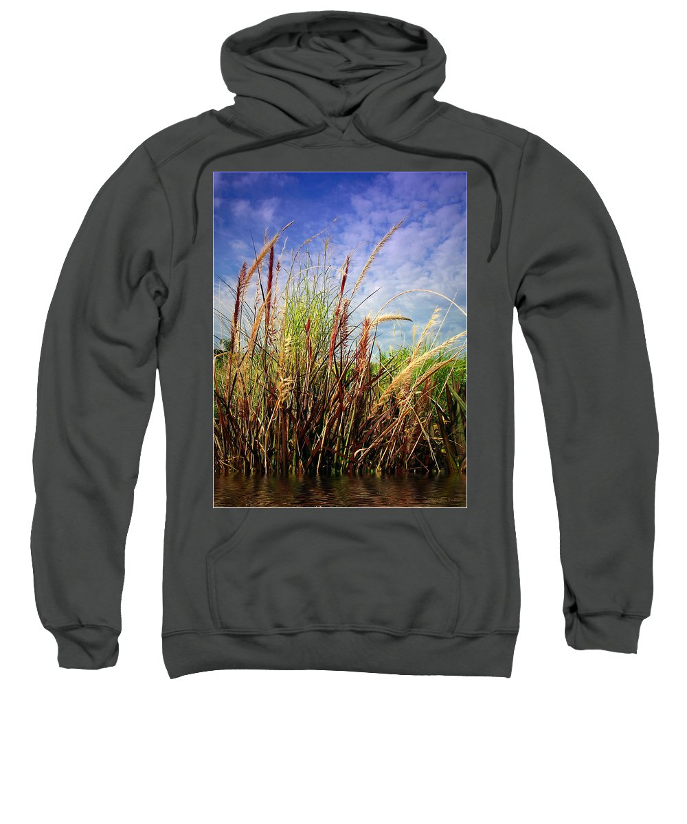 Grass Sweatshirt featuring the photograph Grasses Standing Tall by Joyce Dickens