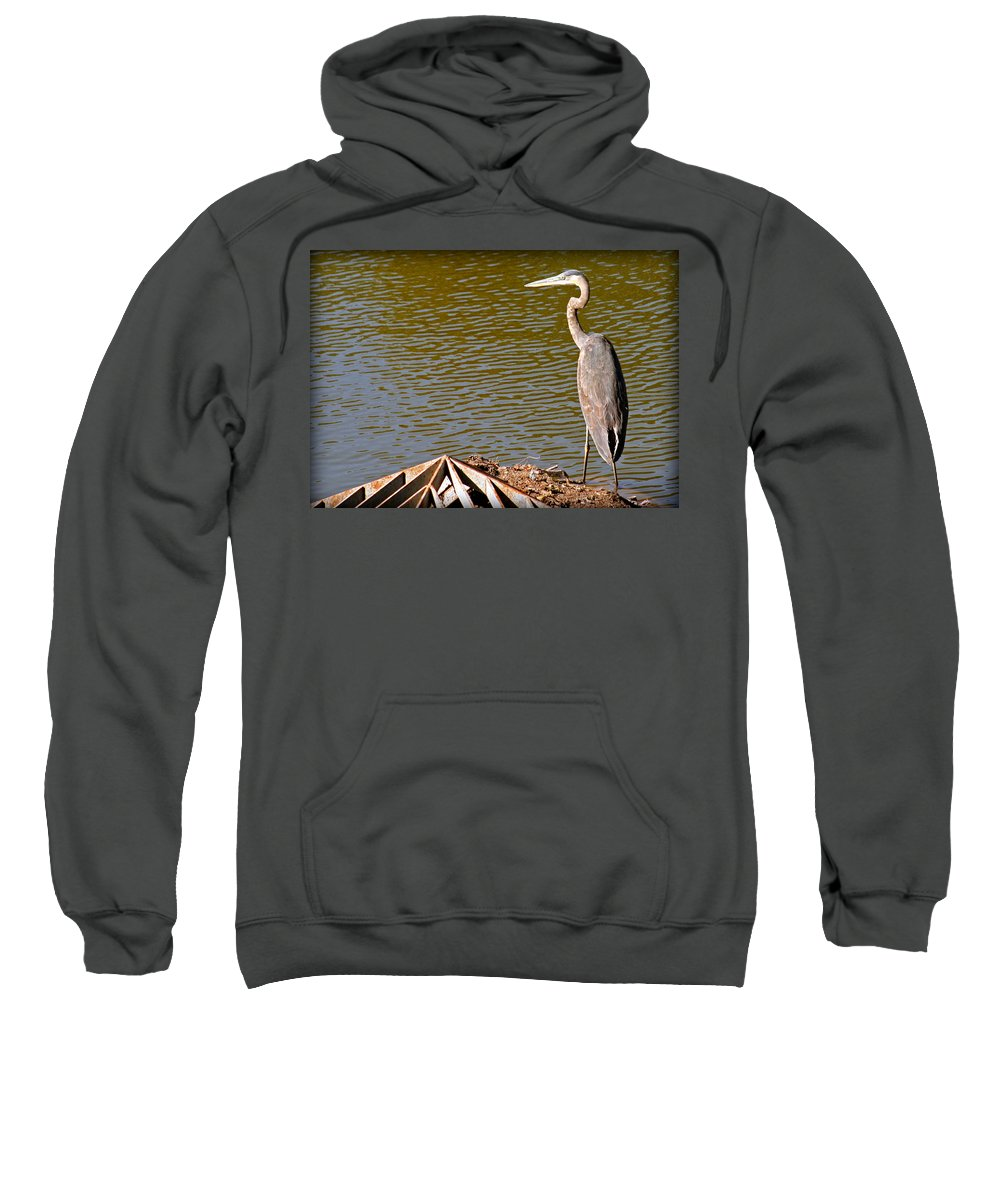 Great Sweatshirt featuring the photograph Great Blue Heron by Kay Novy