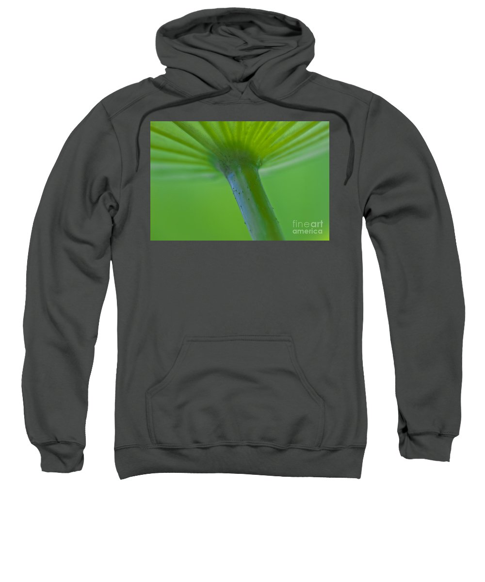 Heiko Sweatshirt featuring the photograph Green Shape by Heiko Koehrer-Wagner