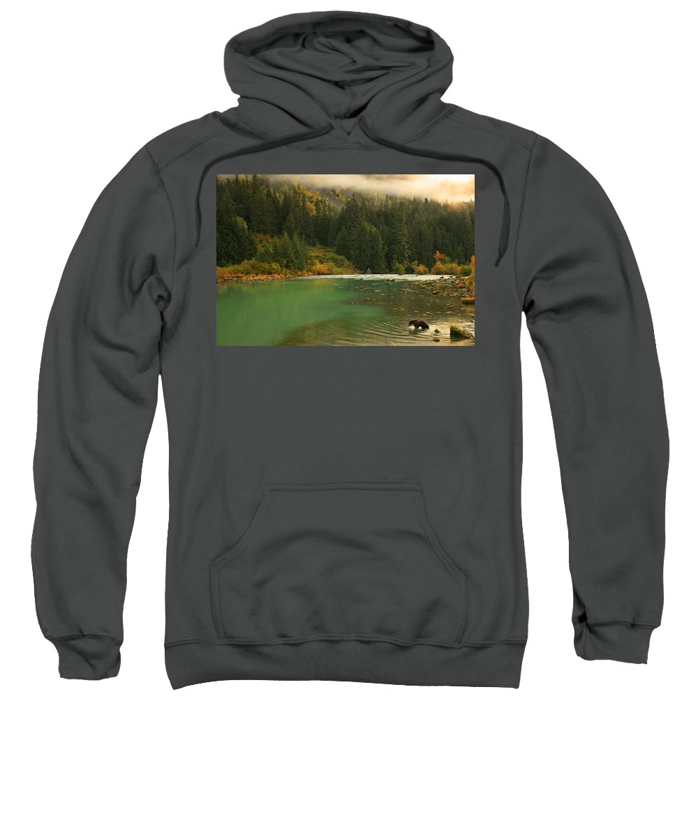 Light Sweatshirt featuring the photograph Grizzly Bear Fishing In Chilkoot River by Robert Postma