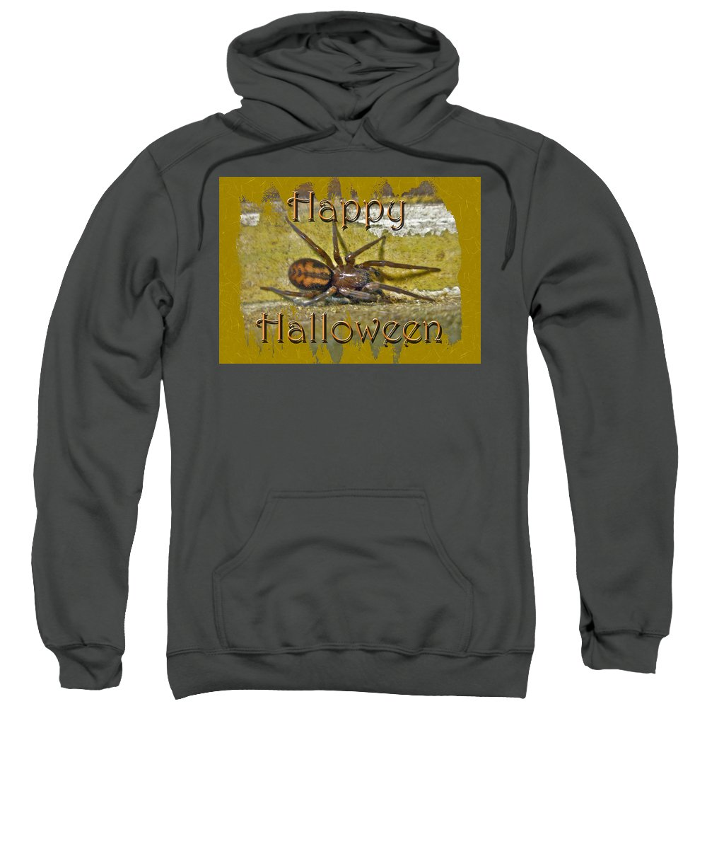 Halloween Sweatshirt featuring the photograph Happy Halloween Spider Greeting Card by Mother Nature
