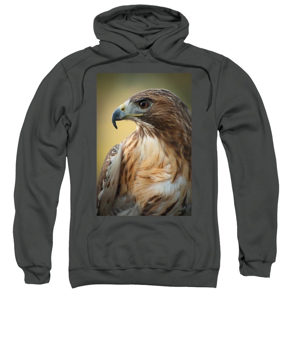Portrait Sweatshirt featuring the photograph Hawkeye by Joye Ardyn Durham