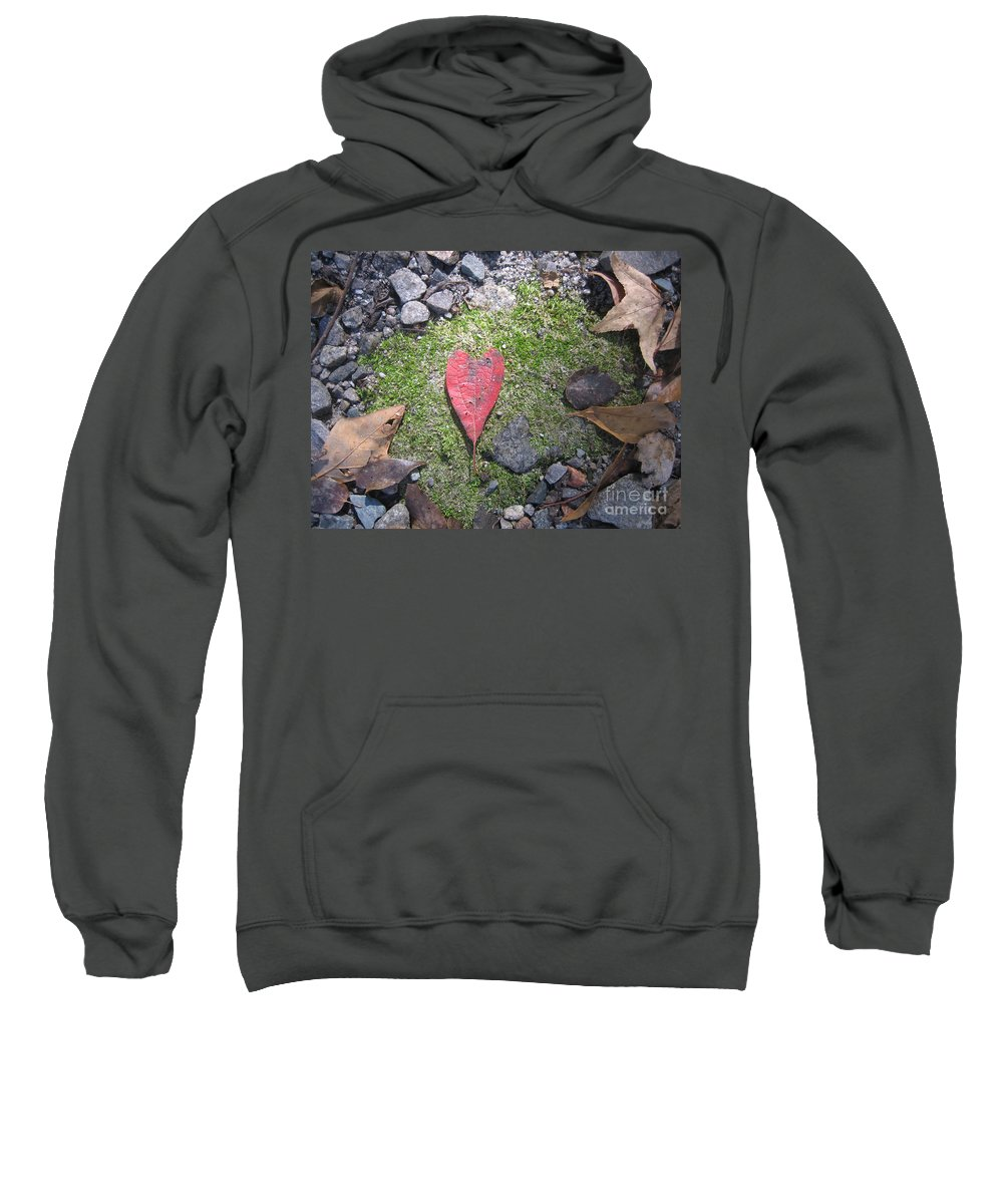 Heart Leaf Sweatshirt featuring the photograph Heart Leaf by Melody Jones