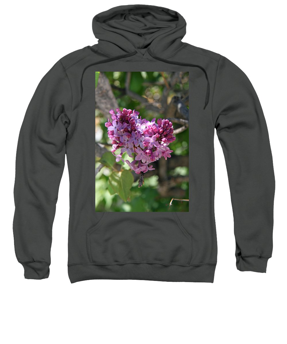 Lilacs Sweatshirt featuring the photograph Heart Shaped Lilac by Elizabeth Rose
