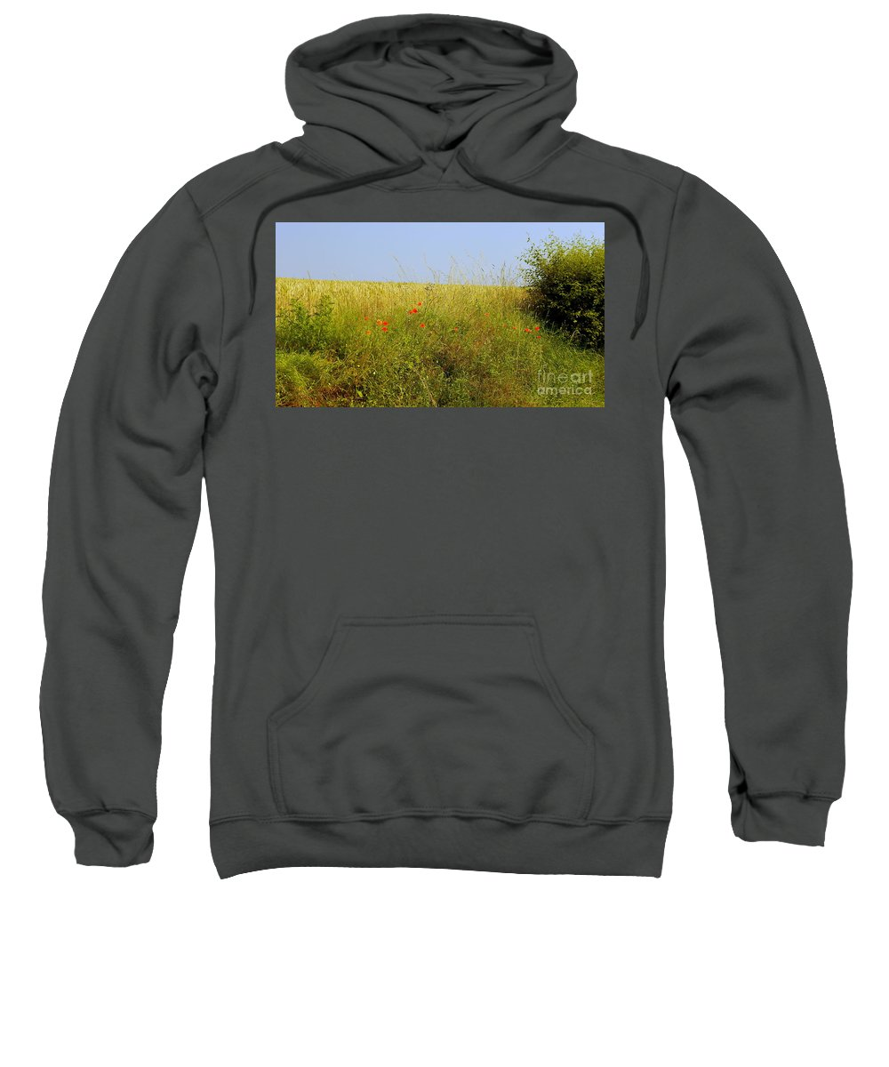 Hedgerow Sweatshirt featuring the photograph Hedgerow Flowers by John Chatterley