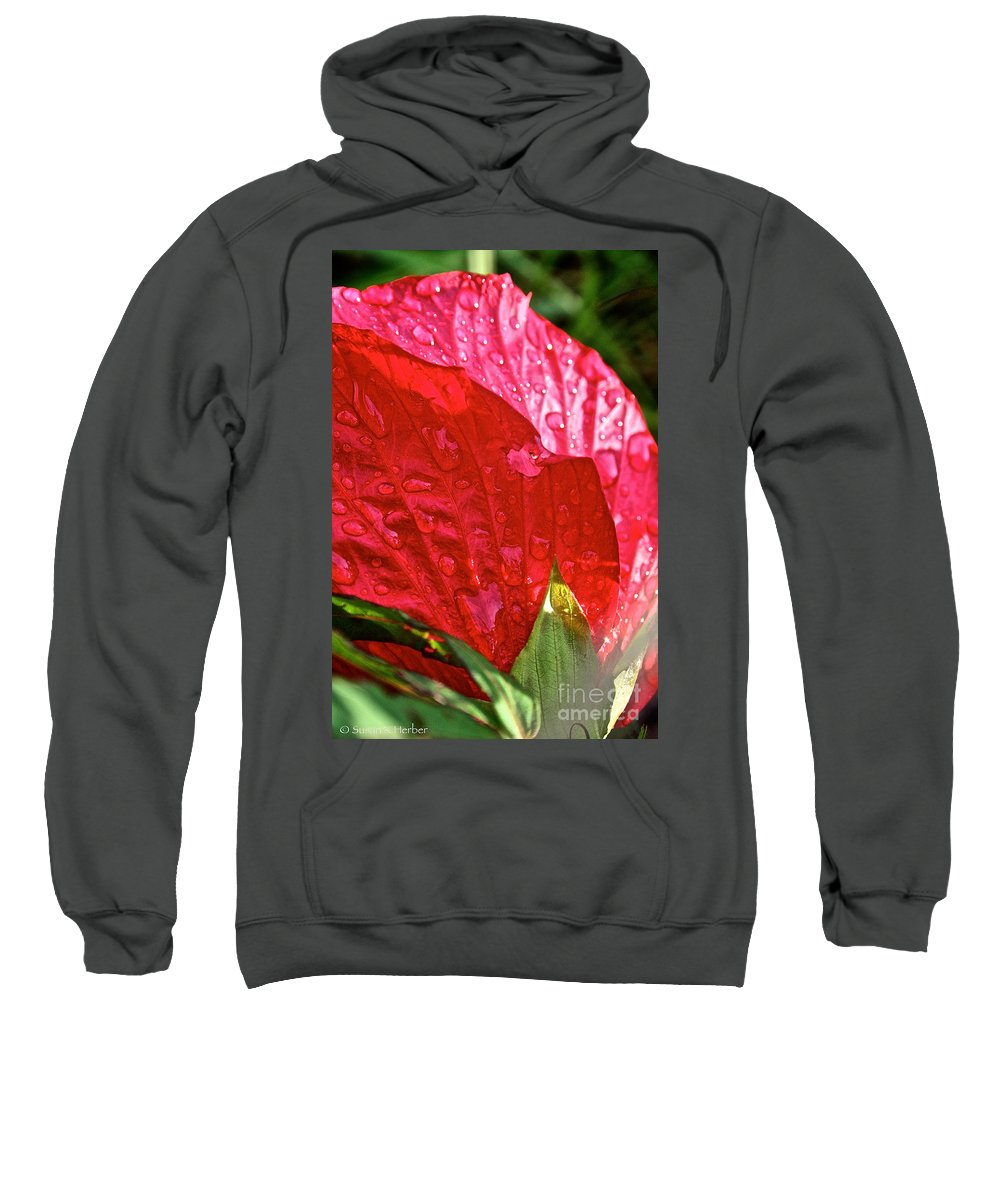 Outdoors Sweatshirt featuring the photograph Hibiscus Blossom In Red by Susan Herber
