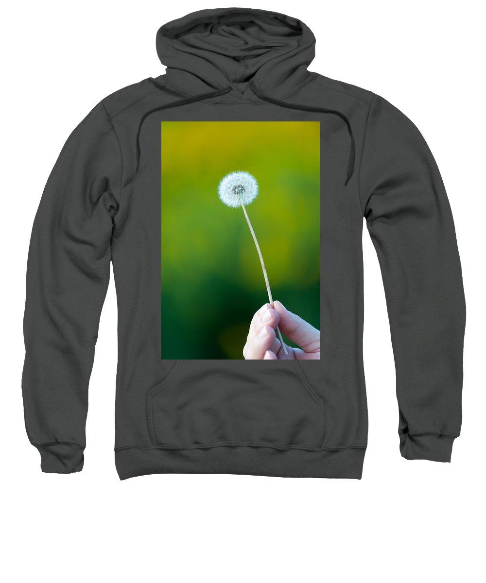 Fall Sweatshirt featuring the photograph Holding On To The Last Days Of Summer by Sebastian Musial