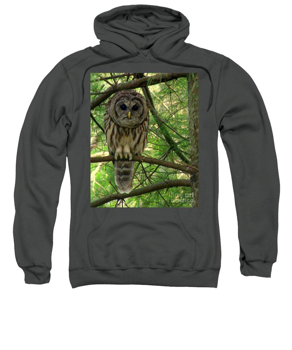 Owl Sweatshirt featuring the photograph Hoot Hoo Dee Hoo by Lainie Wrightson