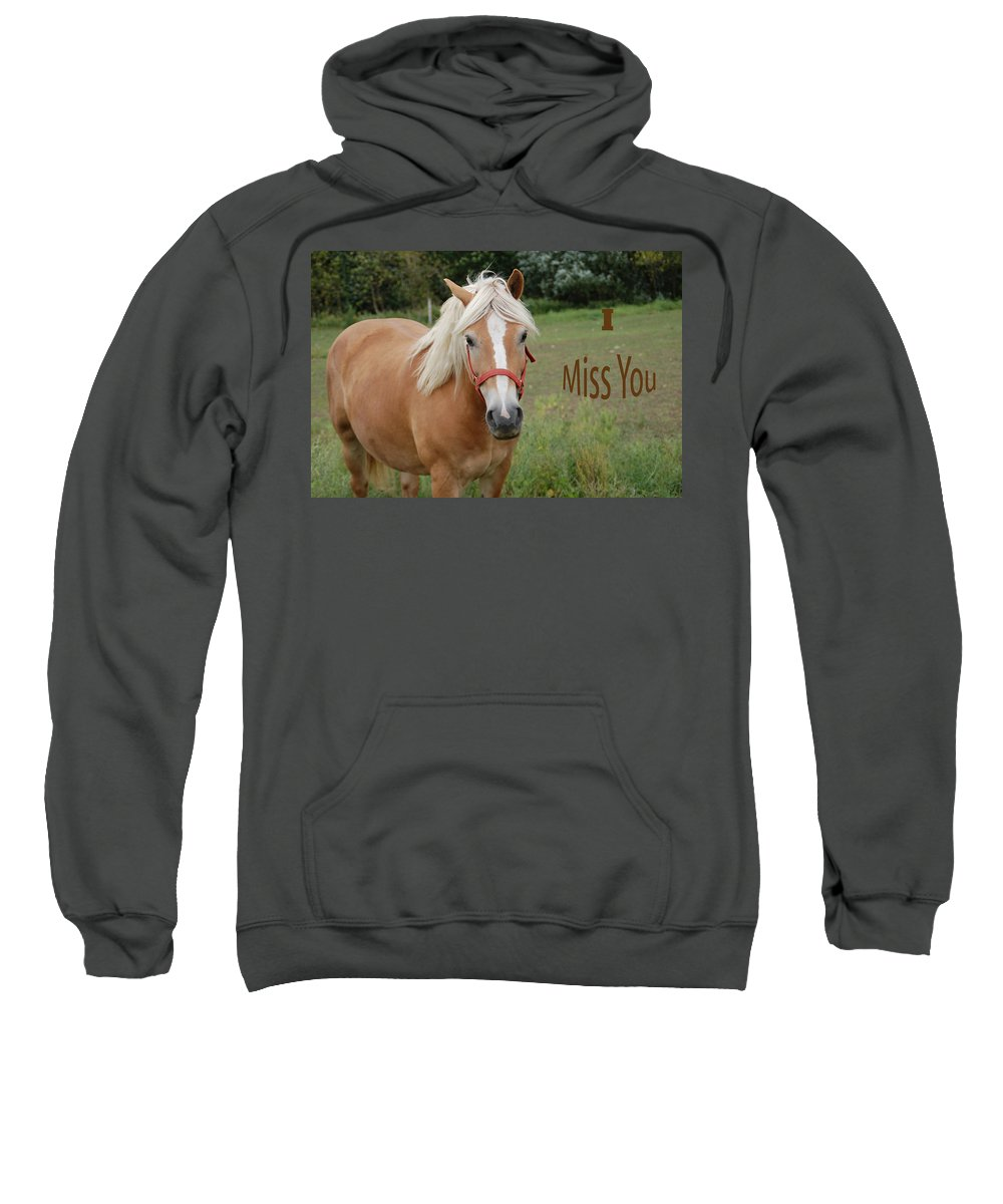 Horse Sweatshirt featuring the photograph Horse Miss You by Aimee L Maher ALM GALLERY