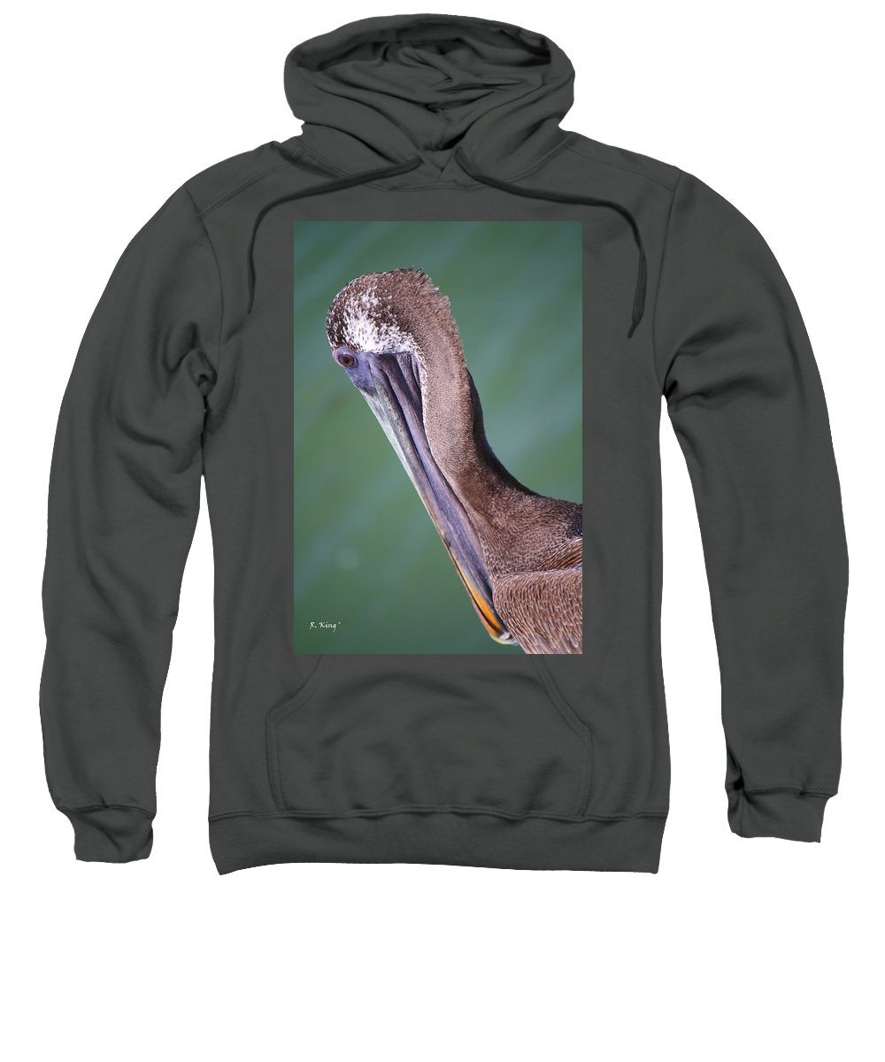 Roena King Sweatshirt featuring the photograph Immature Brown Pelican by Roena King