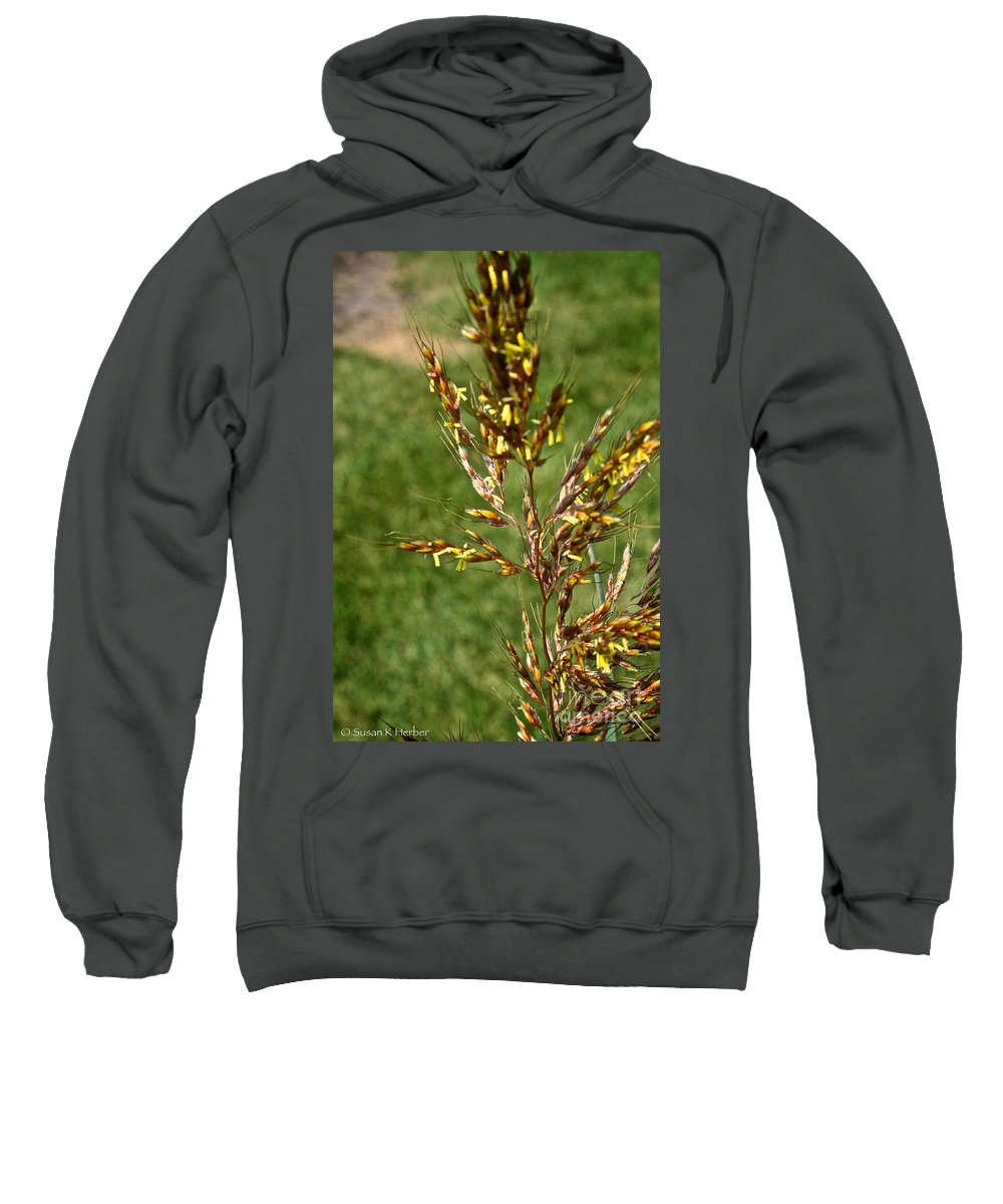 Outdoors Sweatshirt featuring the photograph Indian Grass Seed by Susan Herber