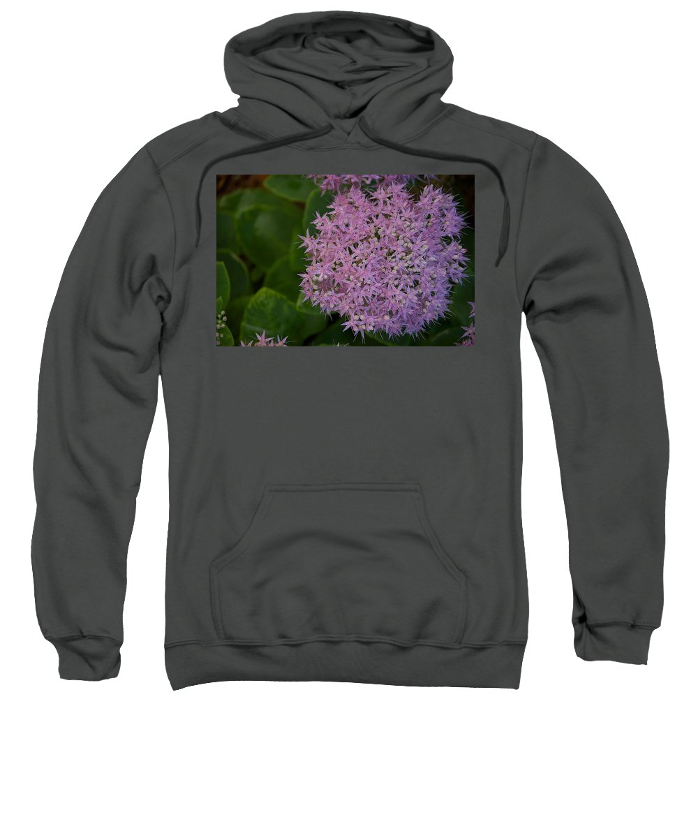 Flower Sweatshirt featuring the photograph Inner White by Joseph Yarbrough
