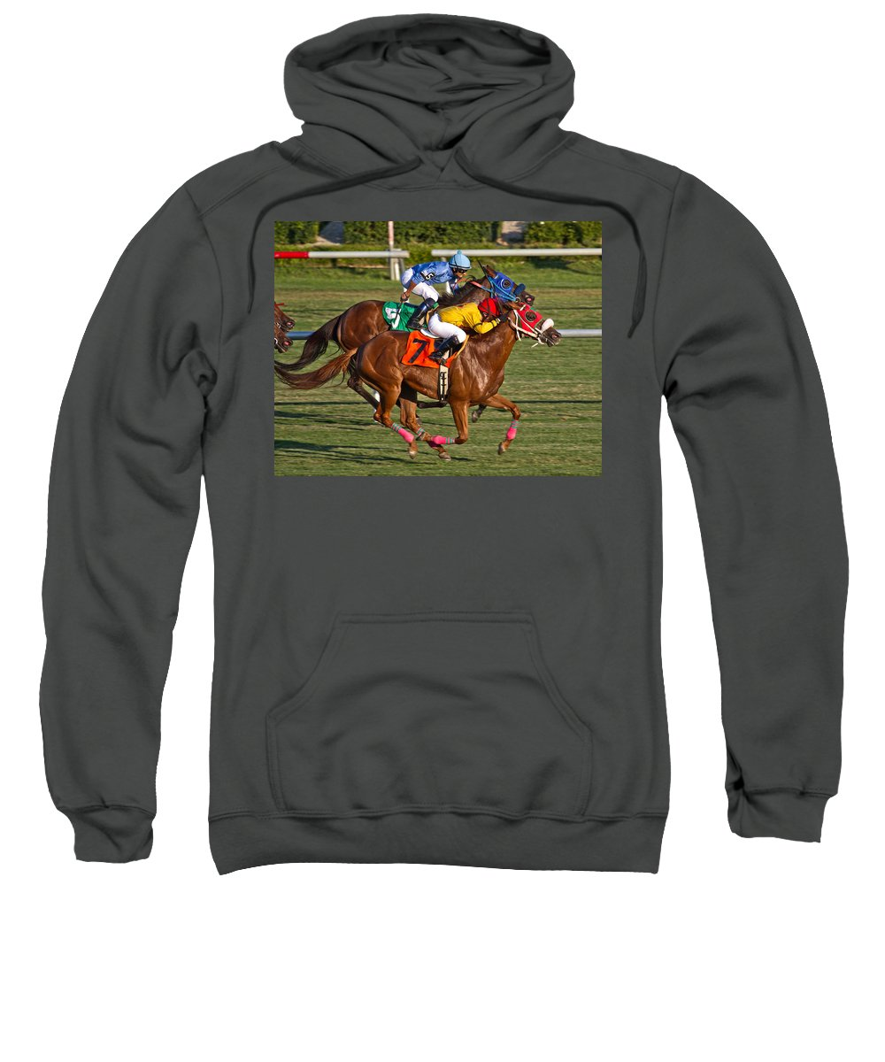 Horse Sweatshirt featuring the photograph It Takes Talent by Betsy Knapp