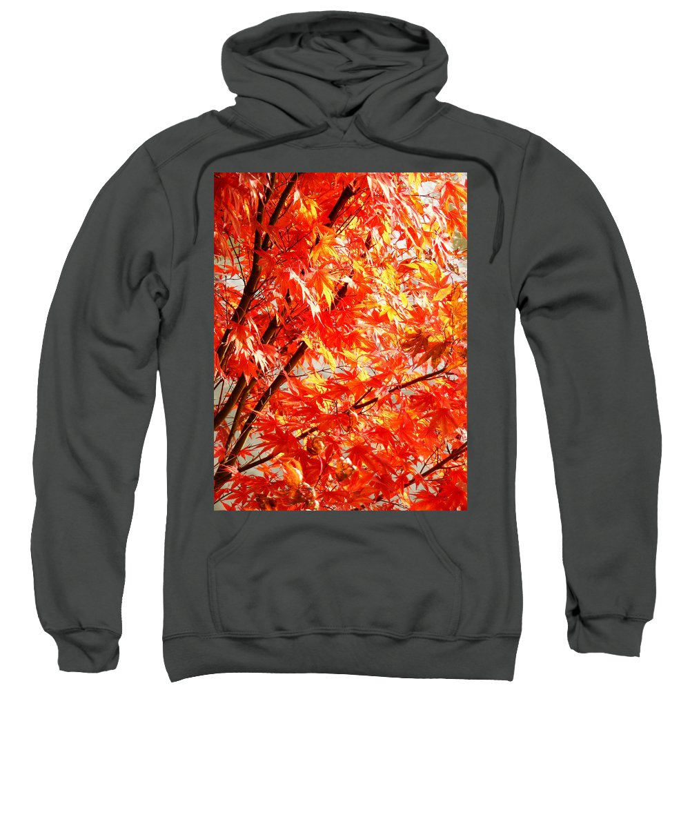 Fall Sweatshirt featuring the photograph Japanese Maple Leaves 12 In The Fall by Duane McCullough