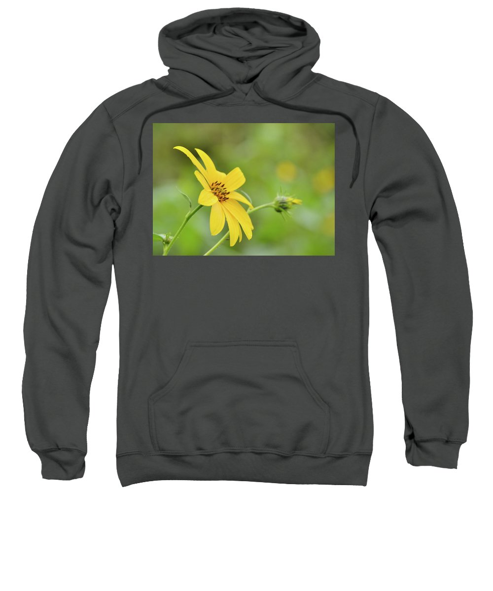 Jerusalem Sweatshirt featuring the photograph Jerusalem Gold by JD Grimes