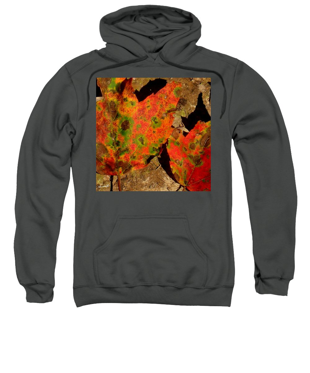 Journey I Sweatshirt featuring the photograph Journey I by Ed Smith