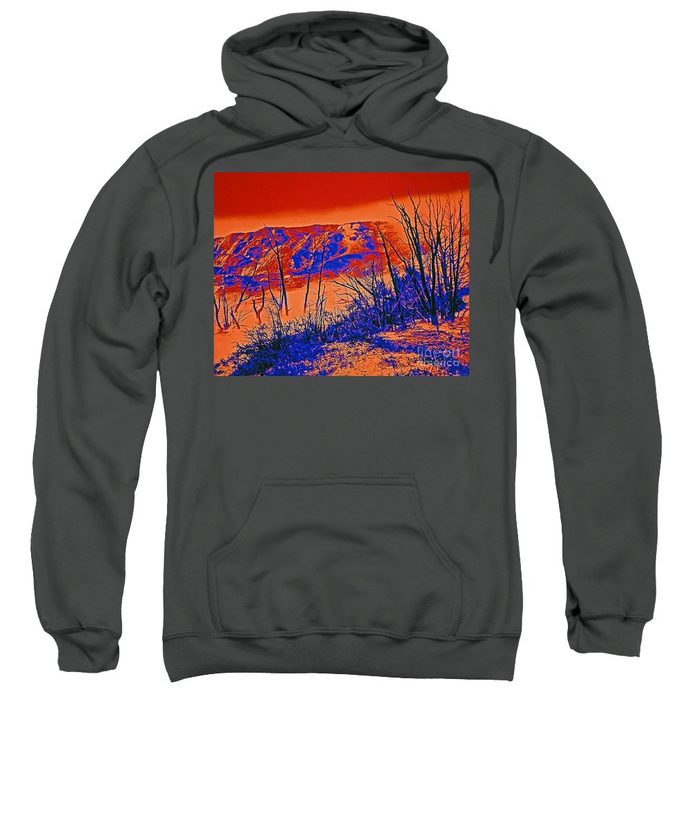 Posterizations Sweatshirt featuring the photograph Jupiter Spring by Rich Walter