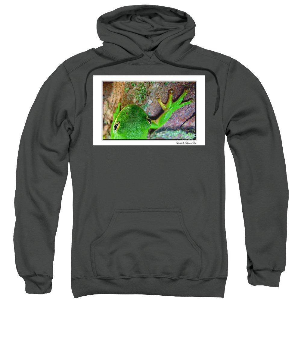 Nature Sweatshirt featuring the photograph Kermit's Kuzin by Debbie Portwood