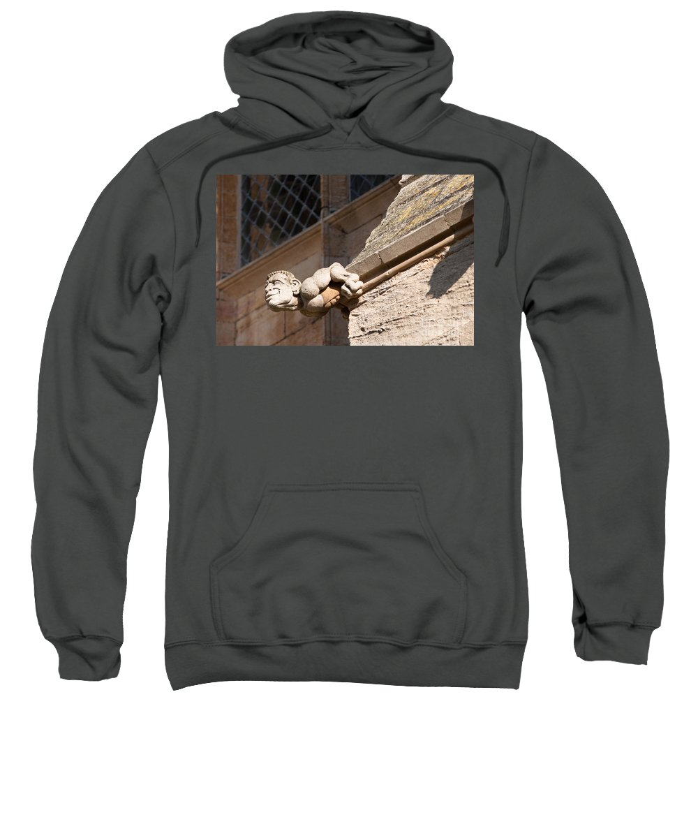 1 Sweatshirt featuring the photograph Leaning Over by Andrew Michael