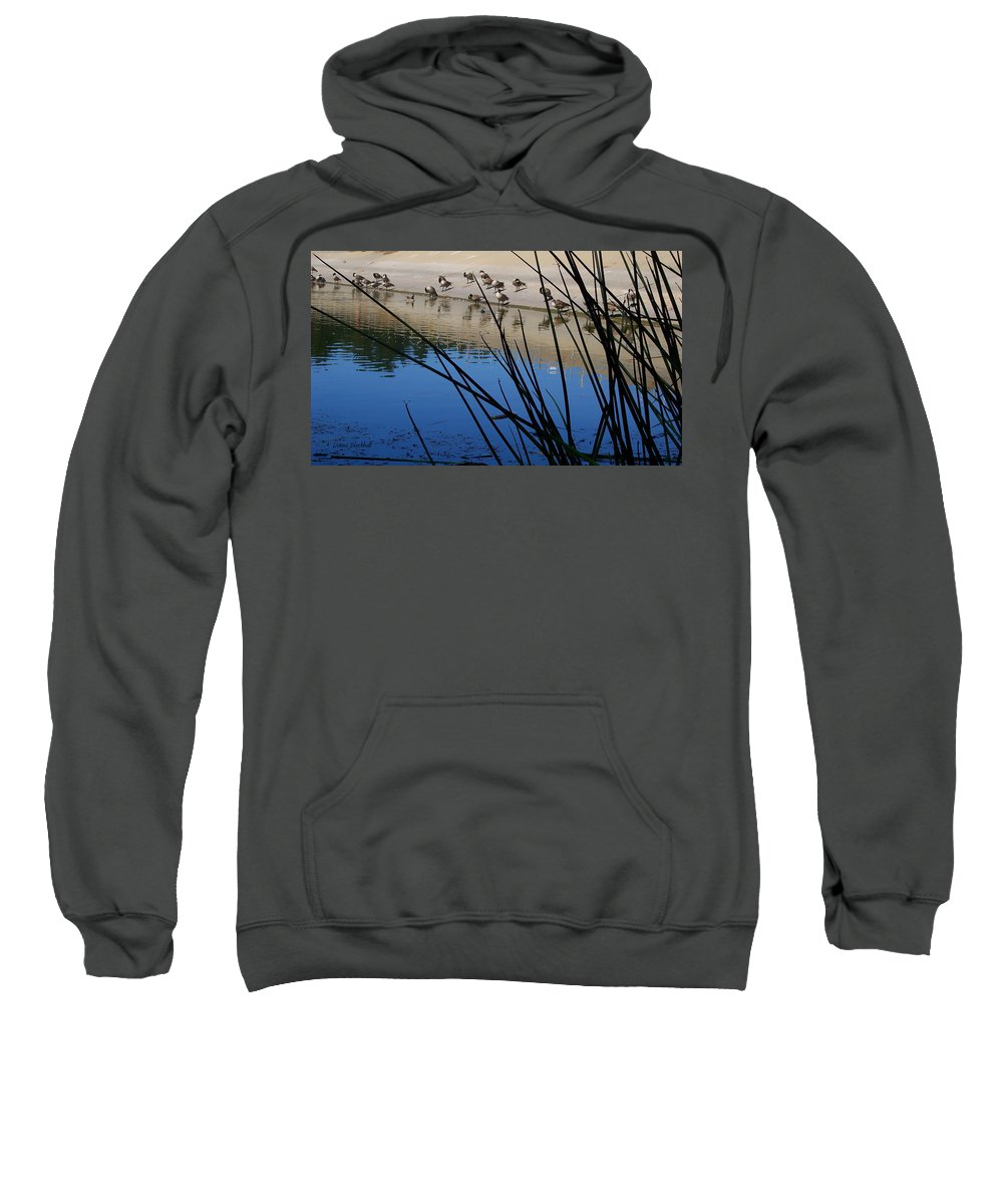 Geese Sweatshirt featuring the photograph Let's Pray by Donna Blackhall