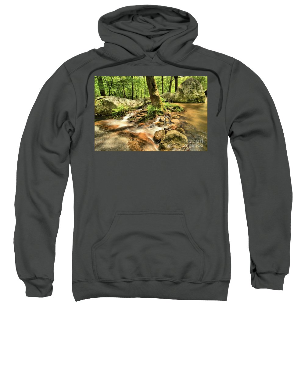 Stone Mountain State Park Sweatshirt featuring the photograph Life On The Rocks by Adam Jewell