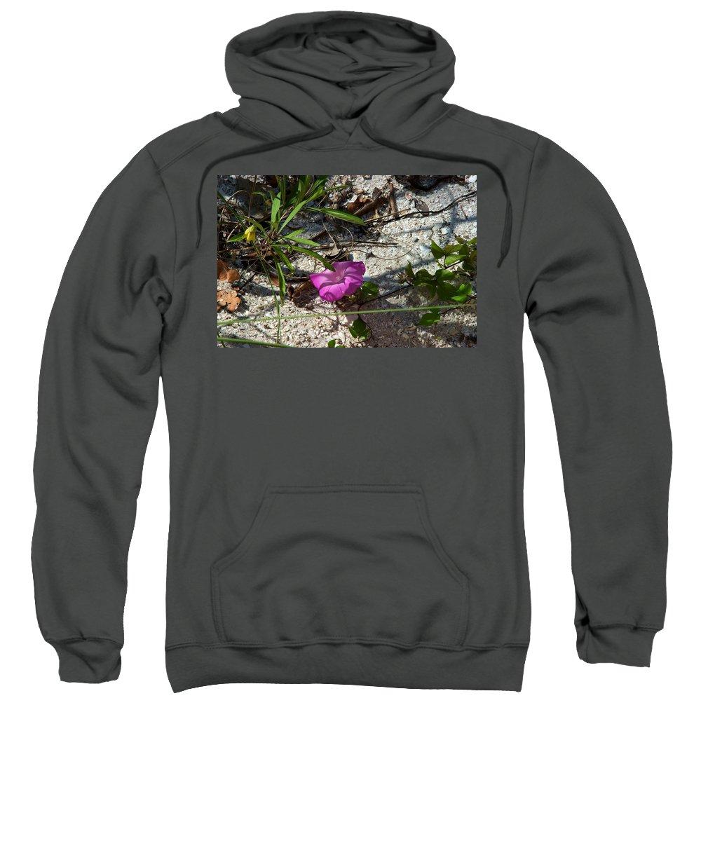 Beach Sweatshirt featuring the photograph Light by Joseph Yarbrough