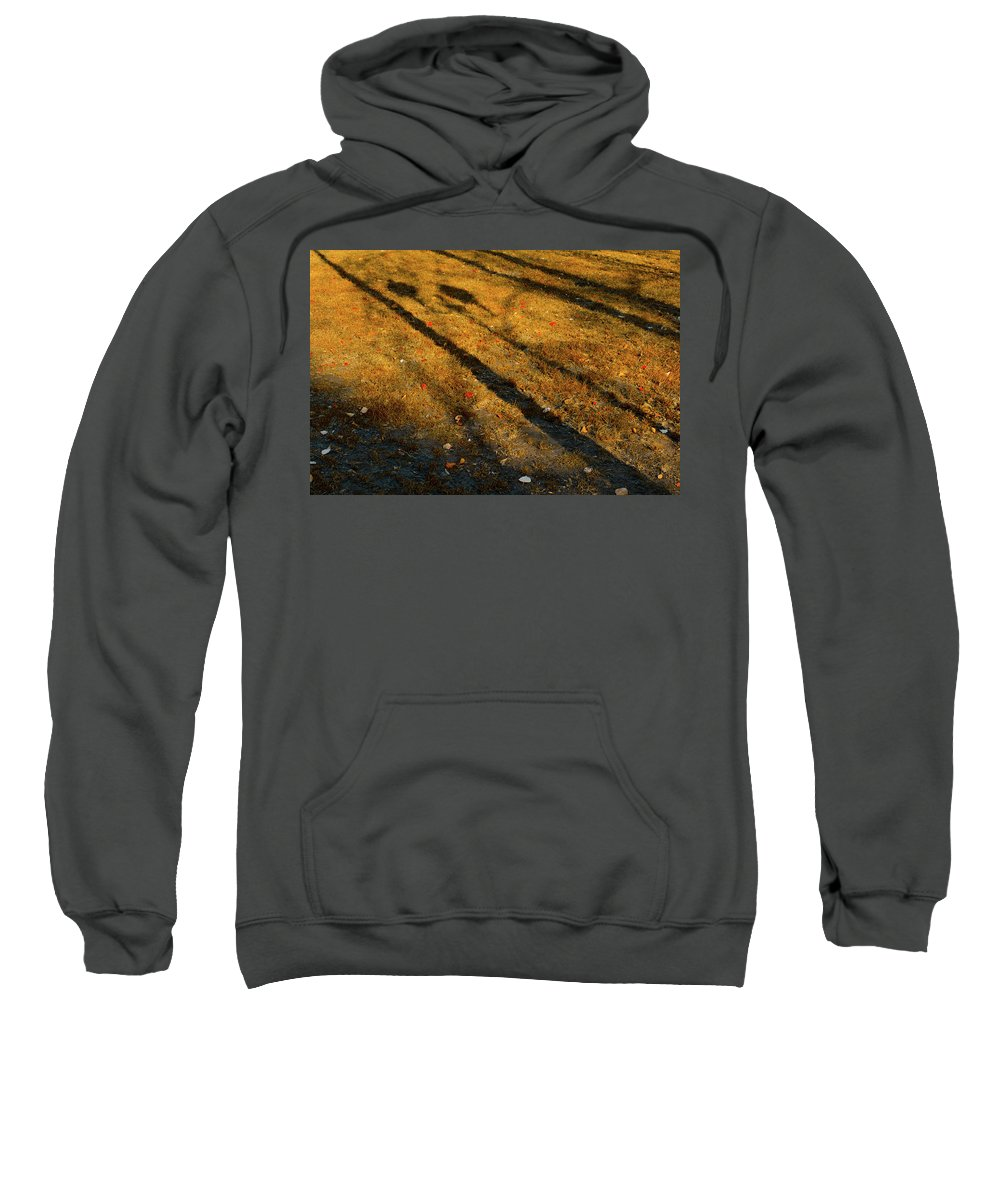 Autumn Sweatshirt featuring the photograph Lights And Shadows by Michael Goyberg