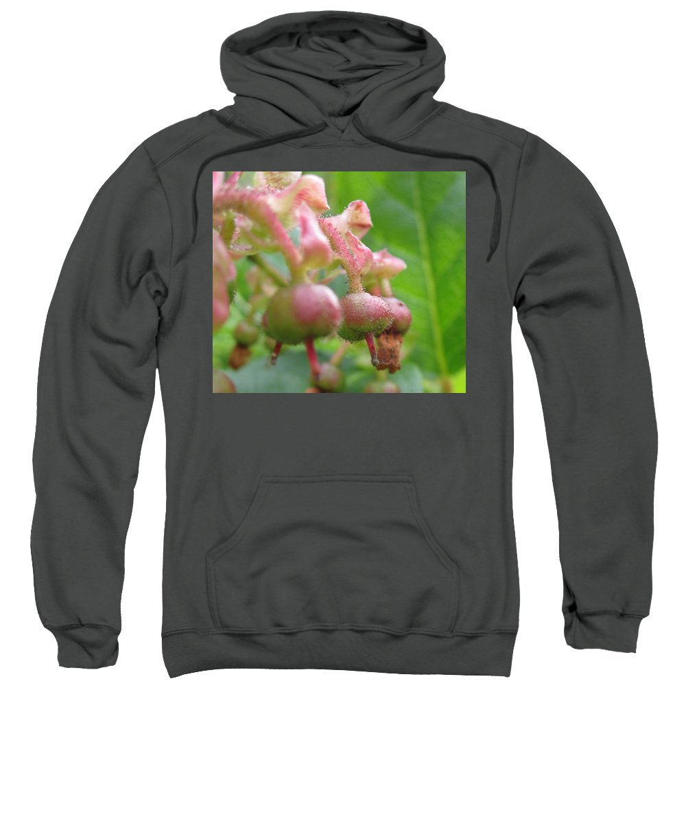 Lilly Of The Valley Sweatshirt featuring the photograph Lilly Of The Valley Close Up by Kym Backland