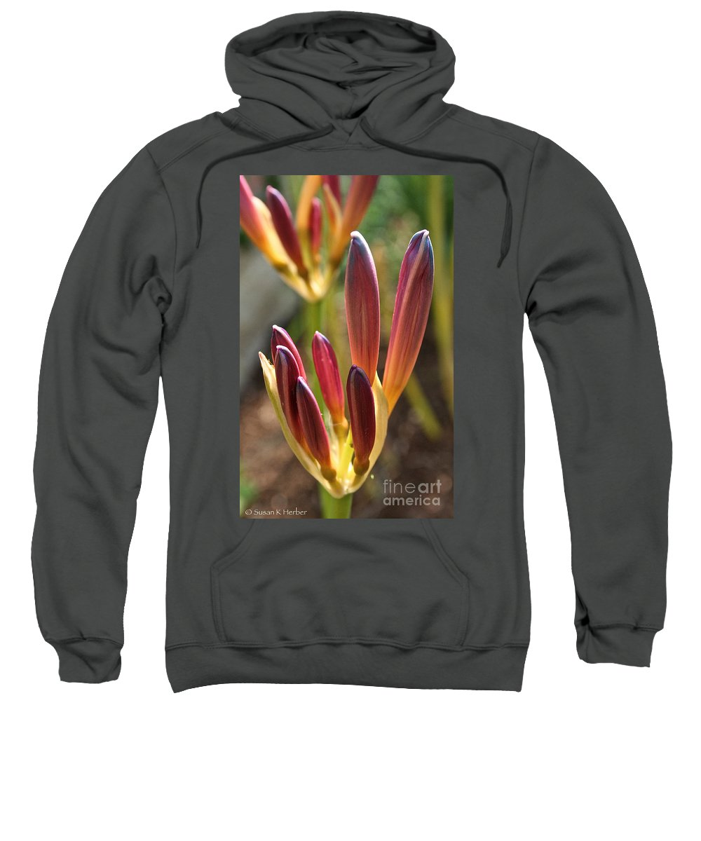 Outdoors Sweatshirt featuring the photograph Lily Candles by Susan Herber
