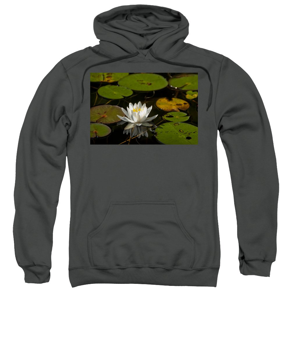 Photography Sweatshirt featuring the photograph Lily On The Pond by Steven Natanson