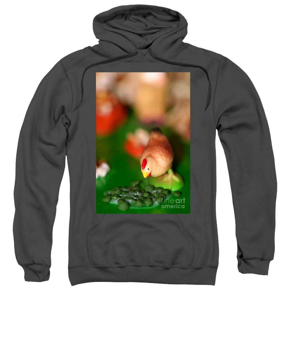 Bird Sweatshirt featuring the photograph Little Chicken by Henrik Lehnerer