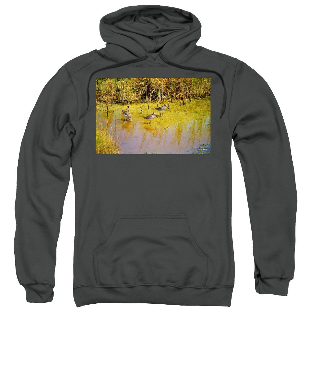Roena King Sweatshirt featuring the photograph Long Billed Dowitchers Migrating by Roena King