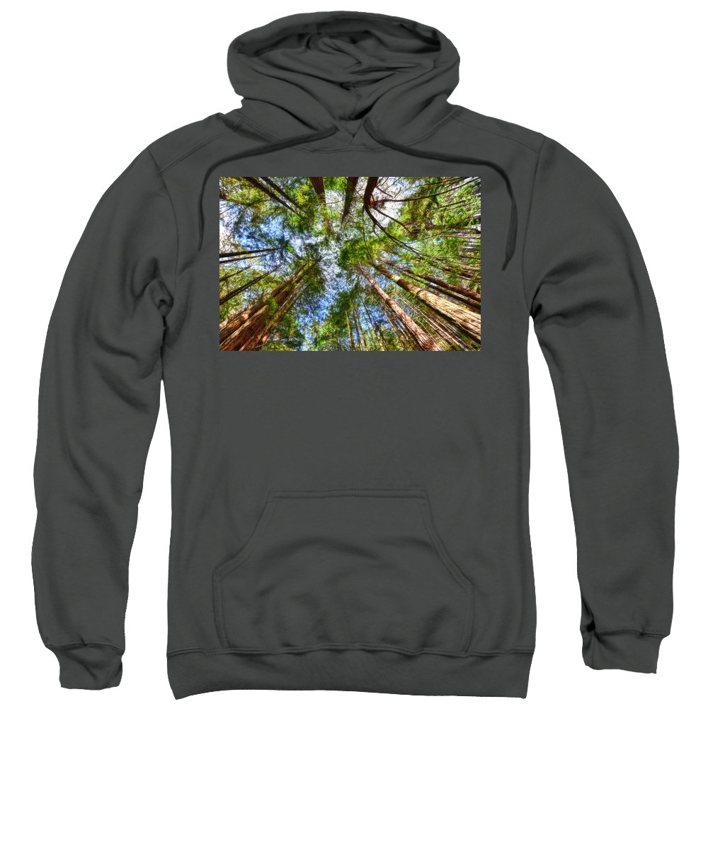 Redwoods Sweatshirt featuring the photograph Look To The Sky by Beth Sargent
