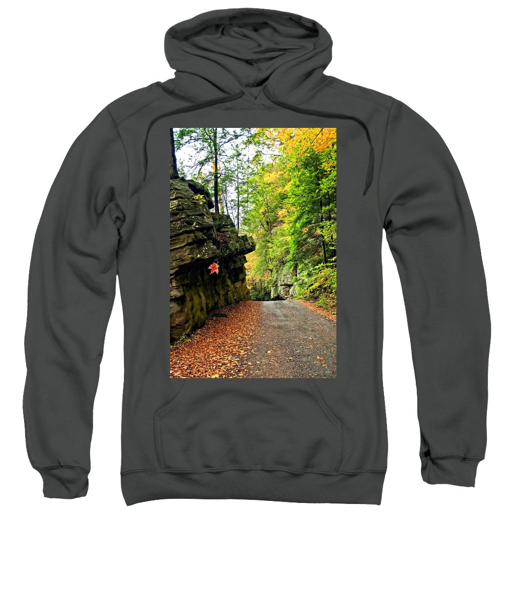Landscape Sweatshirt featuring the photograph Lost In Pennsylvania 2 by Steve Harrington