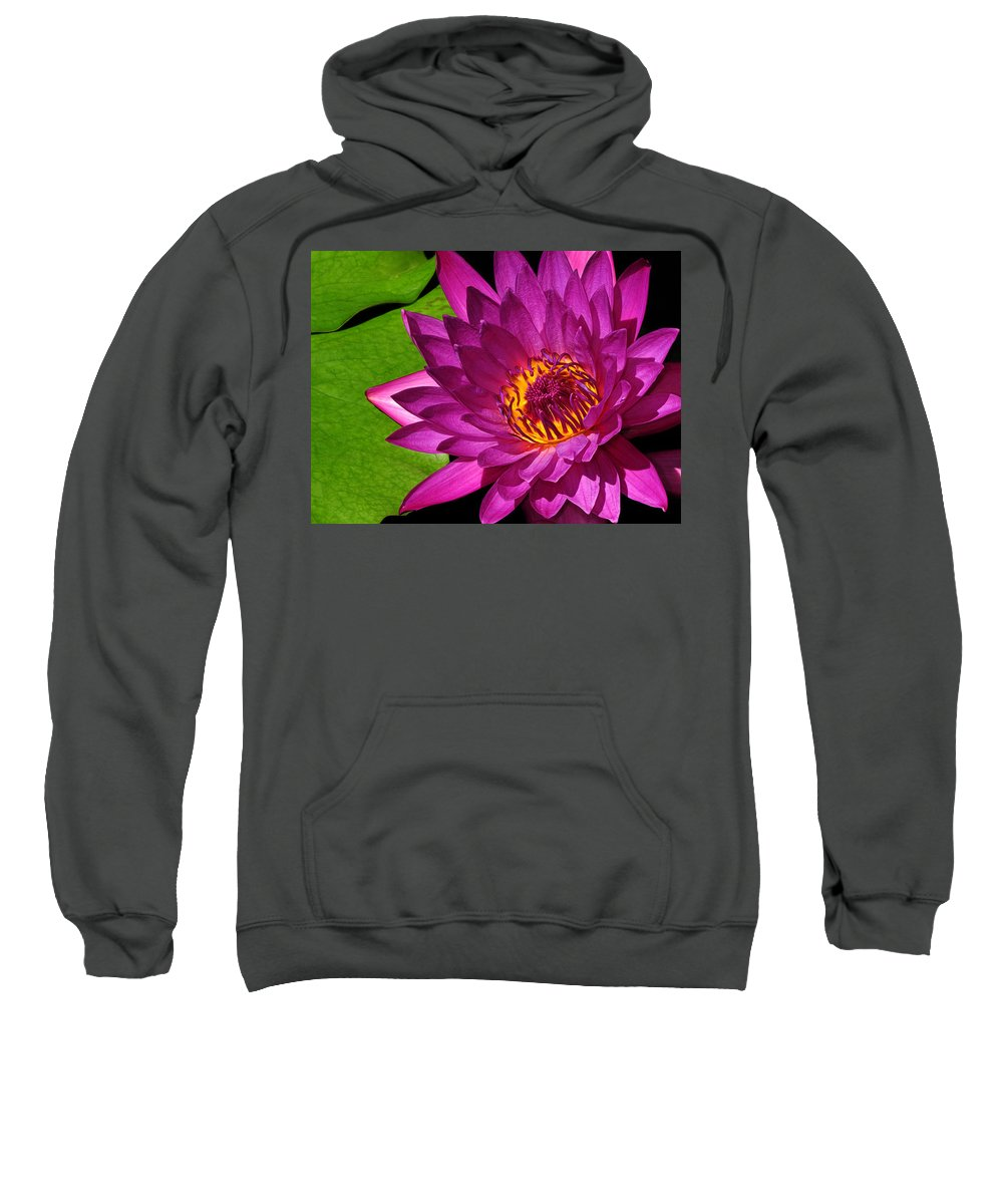 Magenta Sweatshirt featuring the photograph Magenta Waterlily by Dave Mills