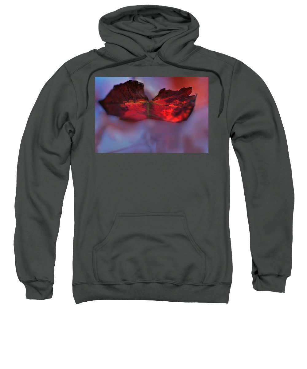 Nature Sweatshirt featuring the photograph Maple Winds by Susan Capuano