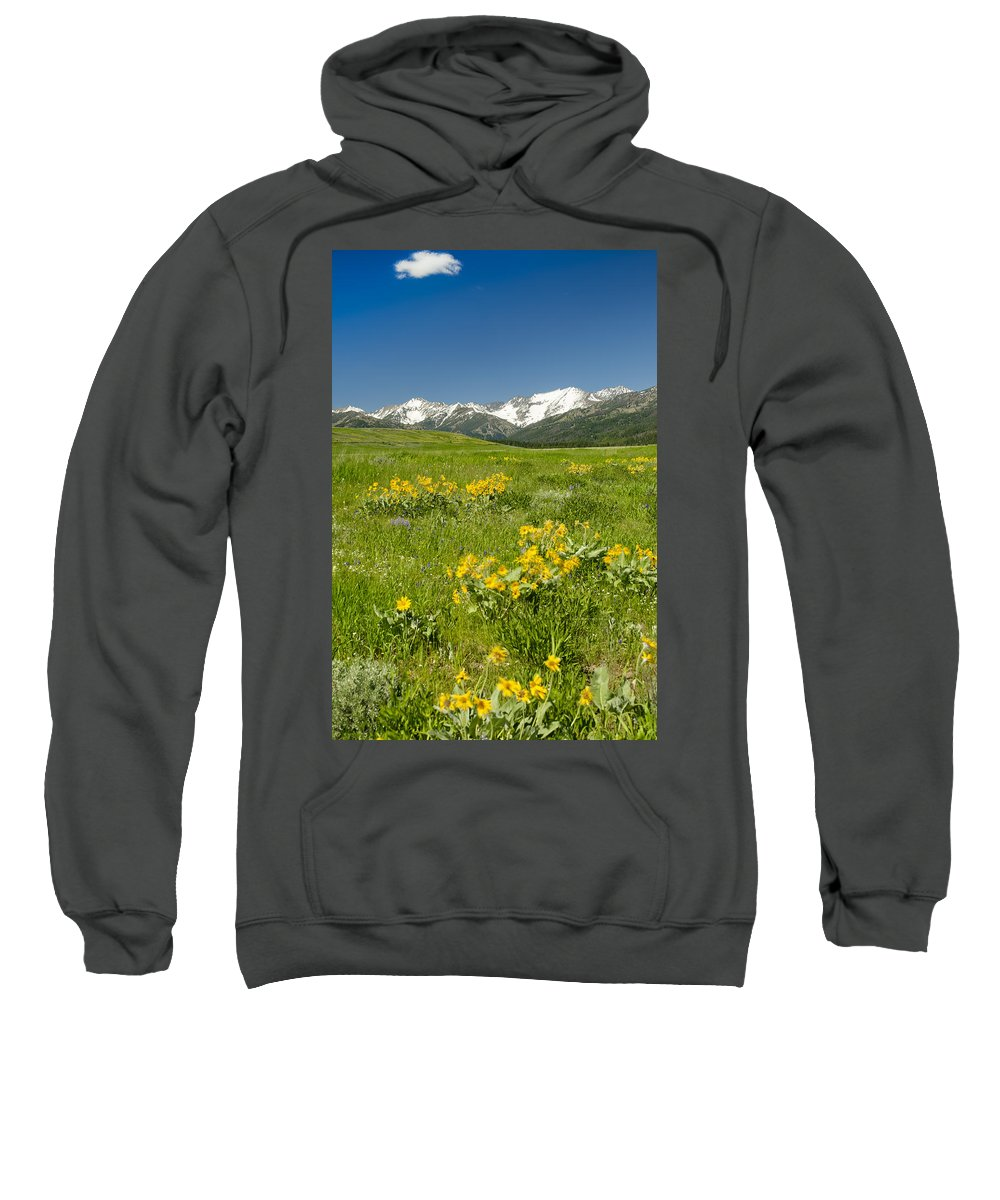 Americas Sweatshirt featuring the photograph Meadow Landscape by Roderick Bley