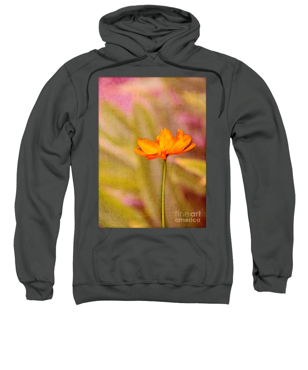 Spring Sweatshirt featuring the photograph Memories Of Spring by Judi Bagwell