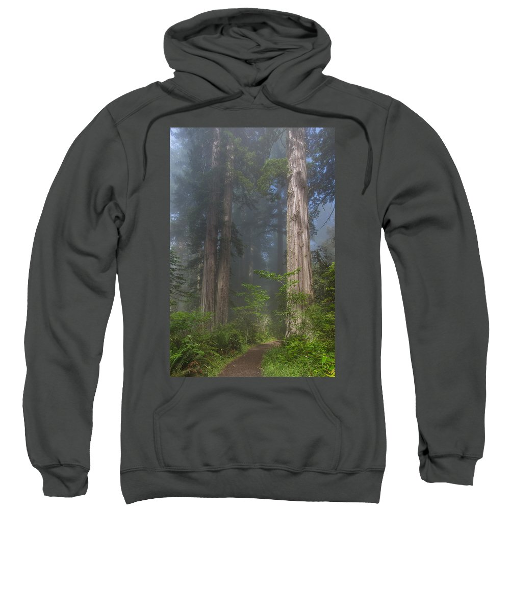 Redwood National Park Sweatshirt featuring the photograph Mists Rising From Lady Bird Johnson Grove by Greg Nyquist