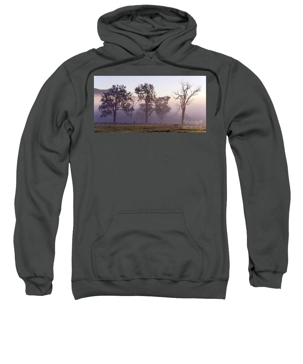 Three Trees Sweatshirt featuring the photograph Misty Dawn by Carole Lloyd