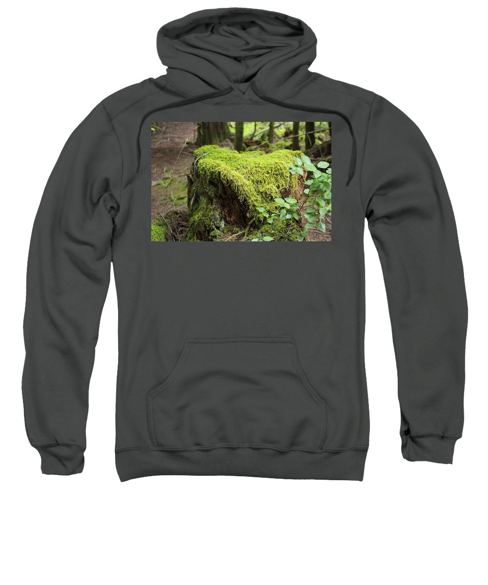 Stump Sweatshirt featuring the photograph Mossy Old Stump by John Greaves
